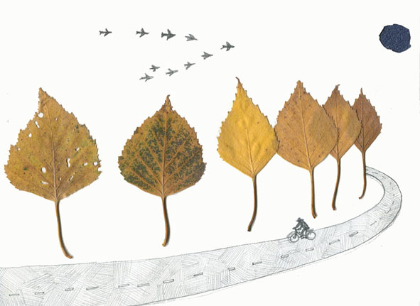 树叶手工艺