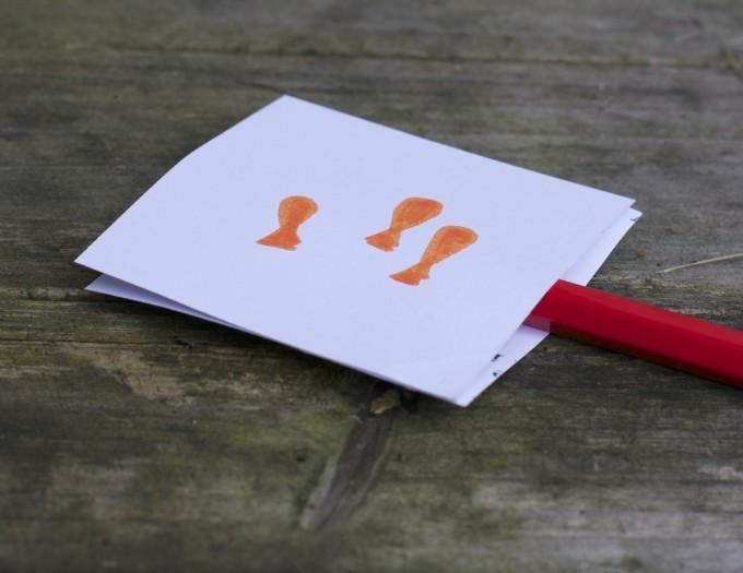 optical illusions worksheet