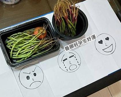 動手DIY