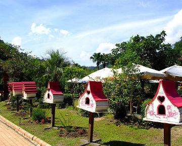 安妮公主花園 - 親子餐廳 - 親子旅遊